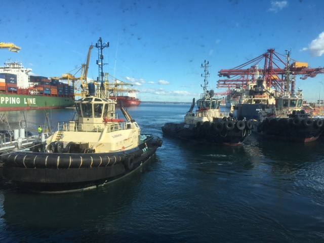 Competition in Pilotage in Melbourne | Shipping Australia